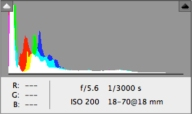 Original Image Histogram