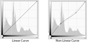 Linear vs Non-linear Curves